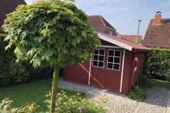 Gartenhaus außen