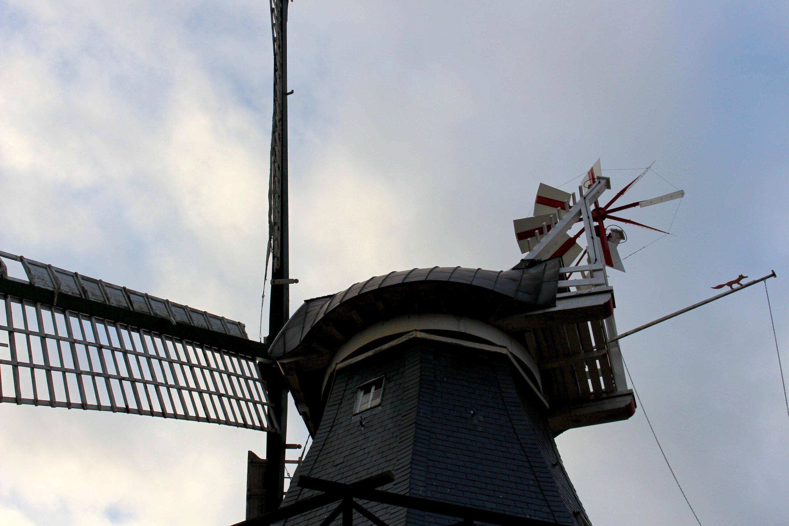 Mühle | Ditzum