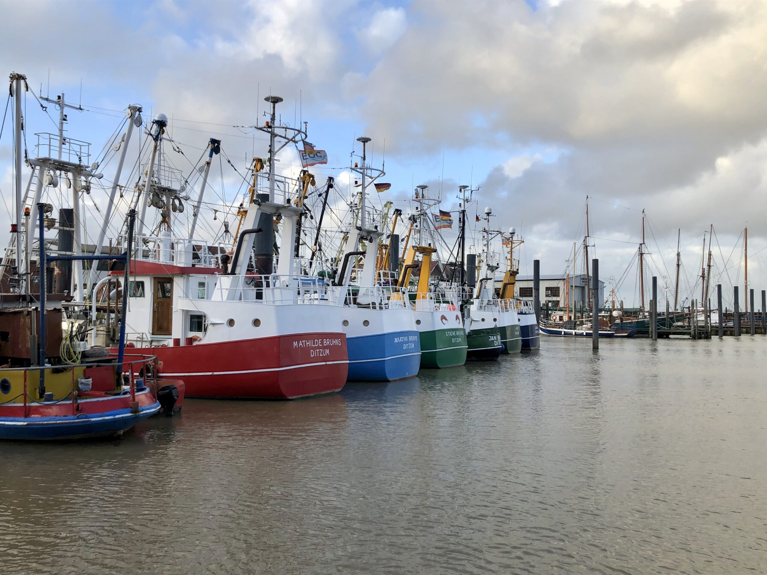 Kutterflotte im Hafen   Ditzum
